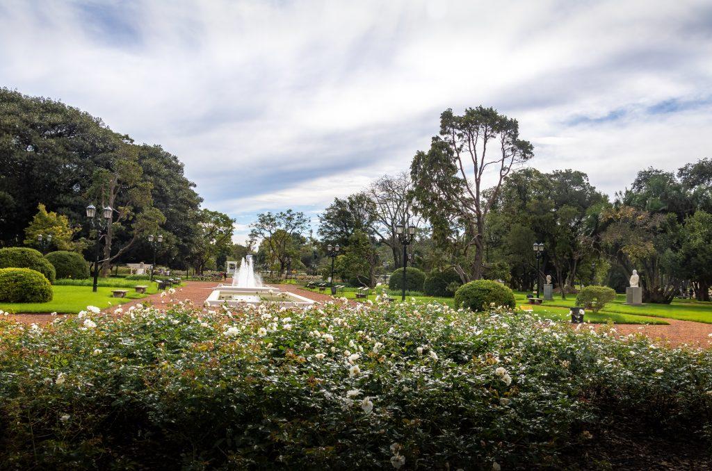 Rose Garden in Argentina